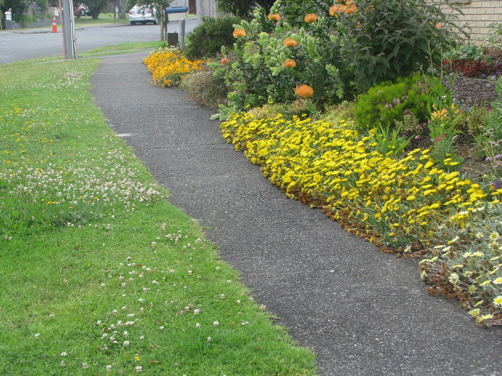 Garden verge with longer lawn and flowers